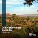 Cerrado é o segundo maior bioma da América do Sul