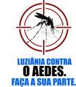 CML apoia a luta contra o Aedes